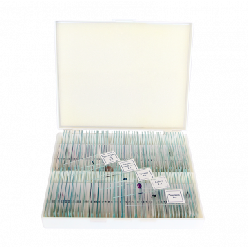 saxon Biological Microscope Slides - SKU#310010