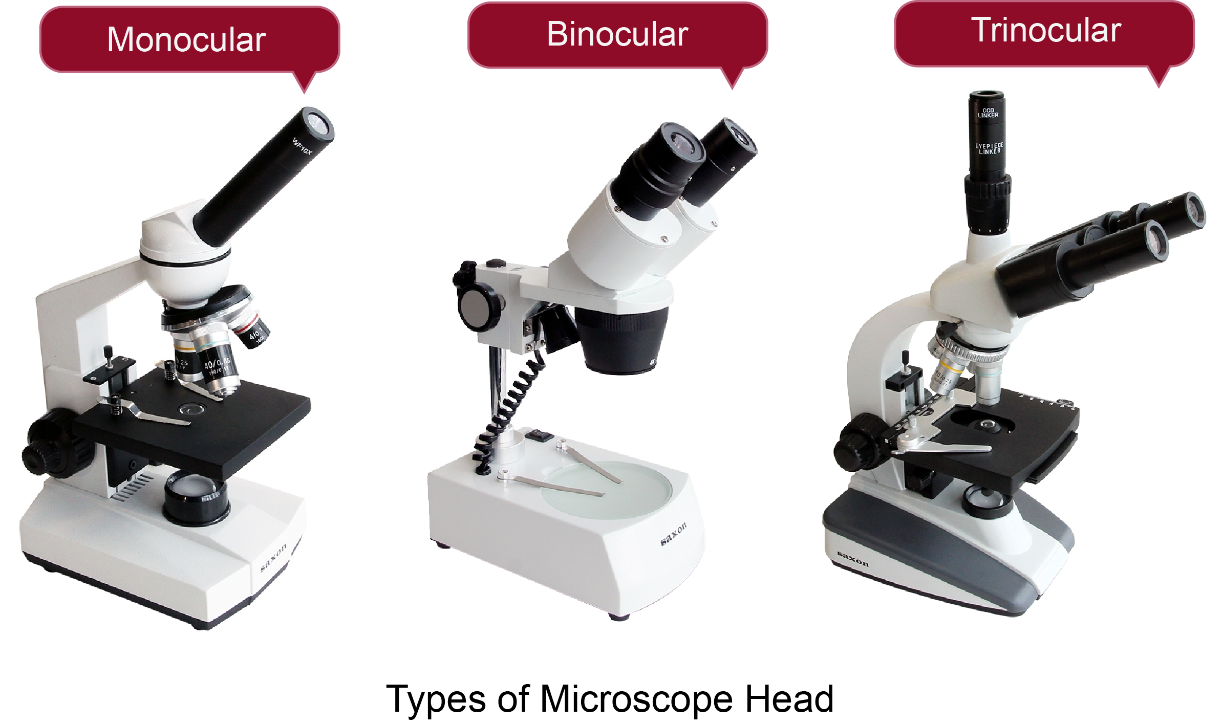 Different Types of Microscope Heads