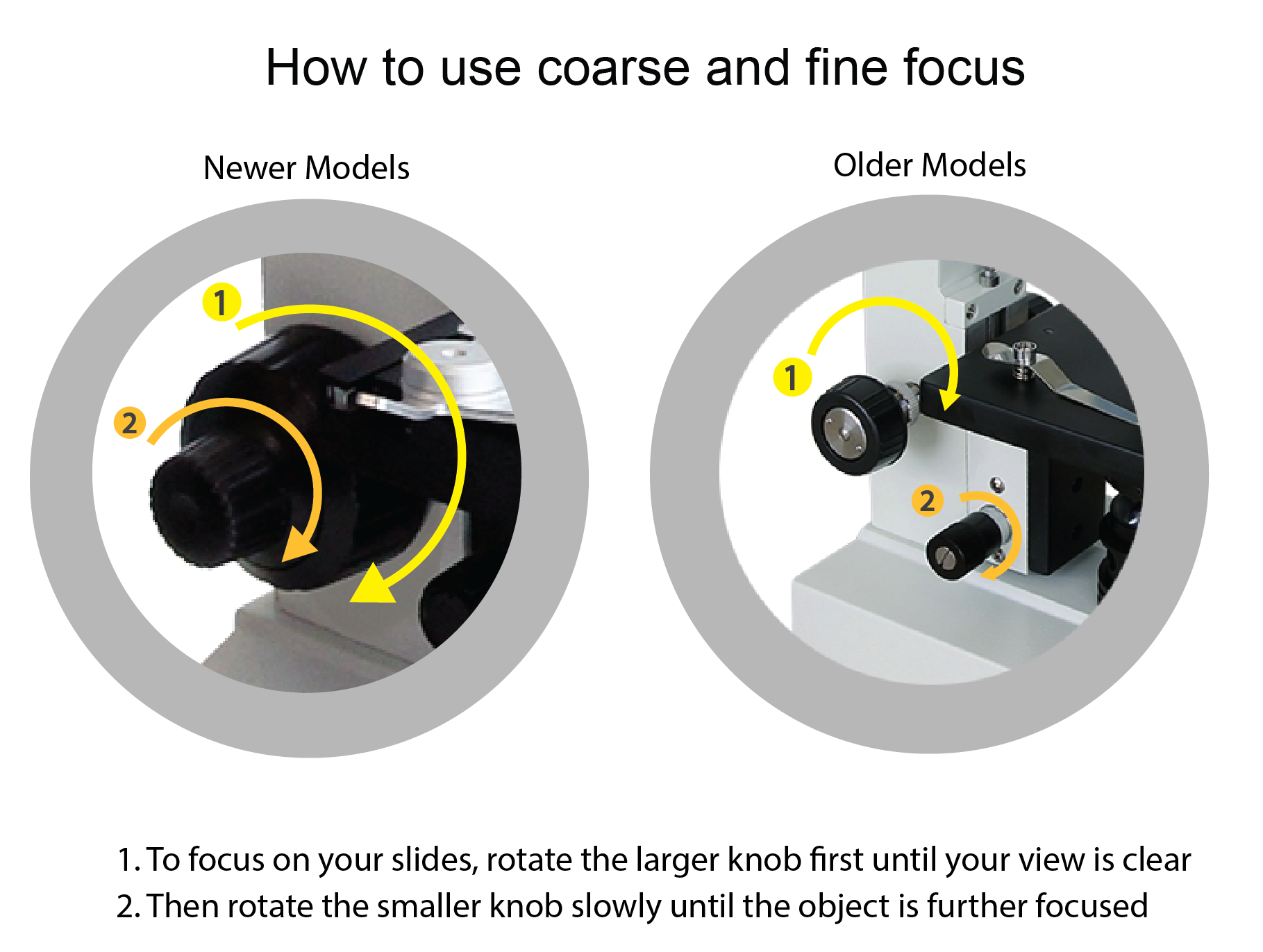 how to use focus on a microscope 01